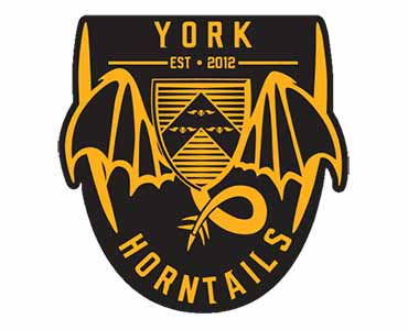 Quidditch Society (York Horntails)